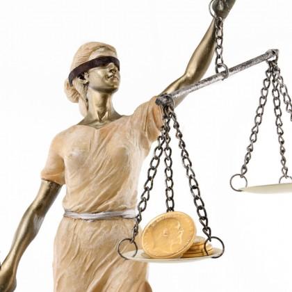 Реформа адвокатури